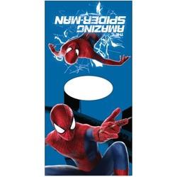 Poncho Spider-Man