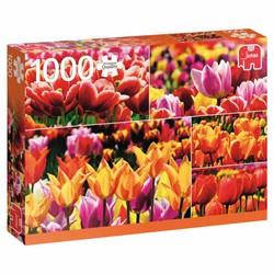 Puzzle 1000 pièces - Tulipes de Hollande