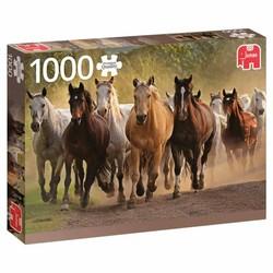 Puzzle 1000 pièces - Un groupe de chevaux
