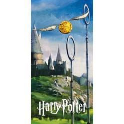 Drap de plage Harry Potter
