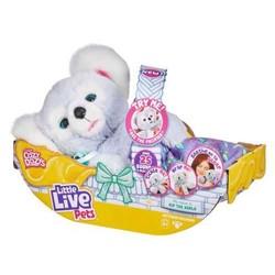 Little Live Pets - Peluche Koala Cozy Dozy